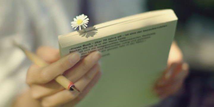 9 lời khuyên cuối cùng của bậc thầy phong thủy khiến hàng triệu người phải lưu lại, càng đọc càng thấm