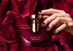 Khám phá ngay 6 loại nước hoa được phụ nữ thích nhất!