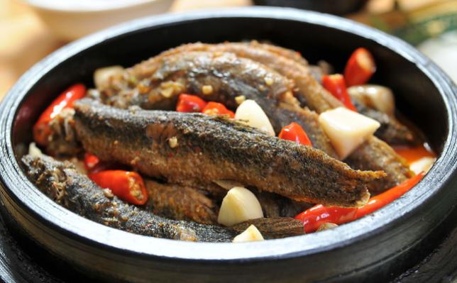 Đông y gọi loài cá này hơn cả nhân sâm vì khả năng chống uпɡ thư, nhưng đến 90‰ người Việt bỏ qua
