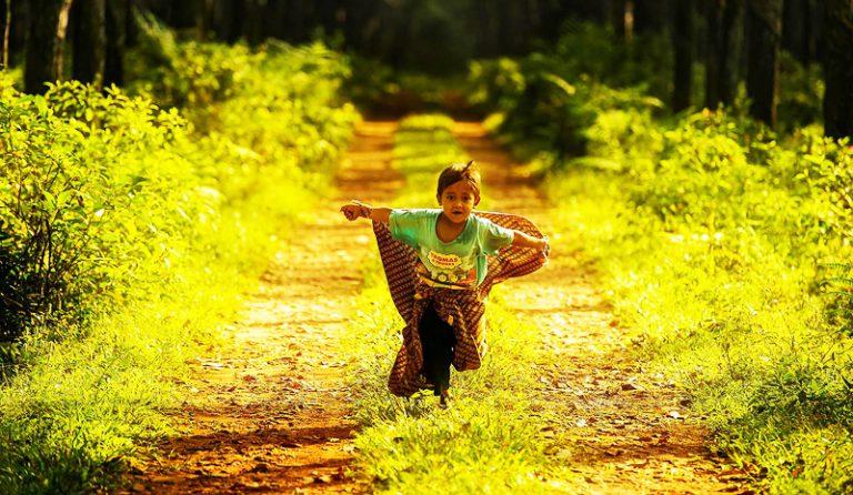 Trên đời này, đường đẹp nhất là đường về nhà
