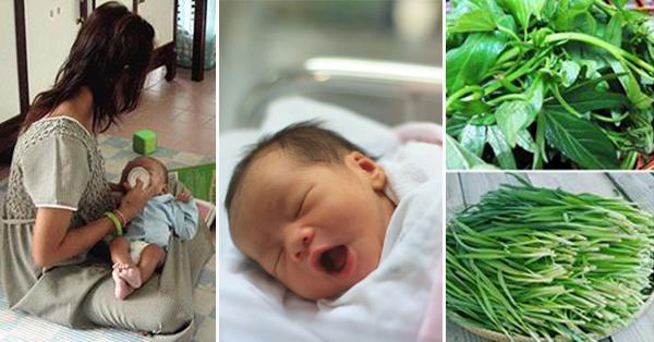6 loại rau cho mẹ sau sinh giải nhiệt cơ thể, nhanh hồi phục lại giúp sữa về tràn trề