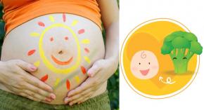 """Nắng đến mấy bà bầu cứ """"nạp"""" 5 thực phẩm này: Mát cả mẹ lẫn con, thai nhi cứ thế phát triển vù vù"""