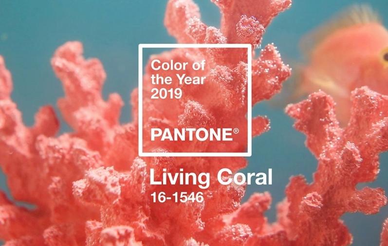 Đi tìm phong cách trang điểm cho nhân viên công sở từ tông màu Cam san hô