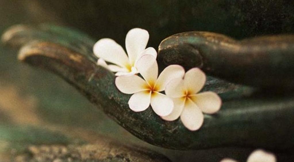 11 quy tắc nhân quả trong đời, hiểu thấu ắt sẽ có được bình an