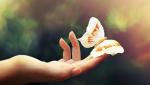 Sống ở đời, lòng đơn giản, thì giảm thiểu phiền não, tăng thêm niềm vui