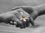 Có những thứ 'cho đi' không mong đền đáp, có những 'giúp đỡ' không bao giờ chờ bạn nói 'Cảm ơn'