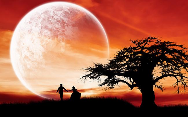 """Triết lý sống giúp bạn giữ được các mối quan hệ bền lâu : """"Càng nồng thì lại càng phai, thoang thoảng hoa nhài mới được thơm lâᴜ"""""""