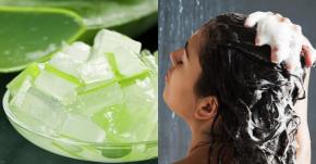 Những nguyên liệu tự nhiên, đơn giản & dễ tìm thay thế dầu gội đầu giúp tóc khỏe, đẹp không cần hóa chất