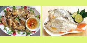 Các bài thuốc dân gian chữa bệnh từ cá diếc