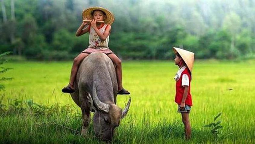 Cuộc đời này, sống đơn giản bao nhiêu sẽ hạnh phúc bấy nhiêu