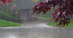 Dù thế gian thay đổi thế nào mưa vẫn rơi một chiều như thế