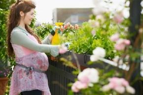 15 điều không tốt cho sức khỏe thai kỳ mẹ bầu nên tránh