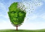 Phòng ngừa Alzheimer bằng những thói quen tốt mỗi ngày